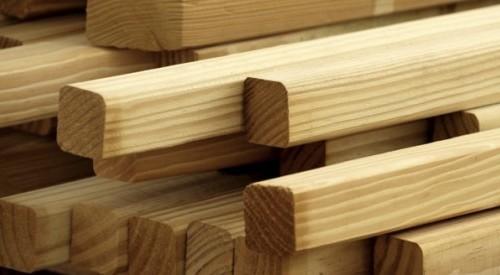 Oyuncak Yapımında Hangi Ağaç Türleri Kullanılır